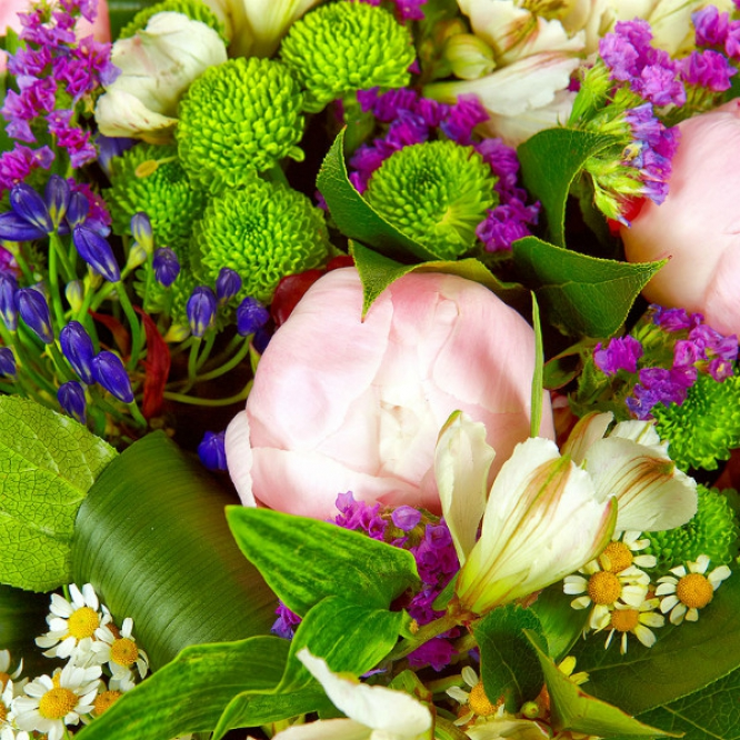Букет цветов из белой альстромерии, зеленой хризантемы, синего агапантуса, ромашки, пионов и статицы №8 с доставкой.