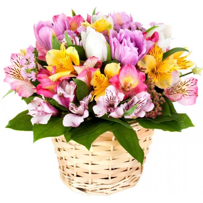 Букет-корзина из микса разноцветной альстромерии, тюльпанов и декоративной зелени с доставкой.