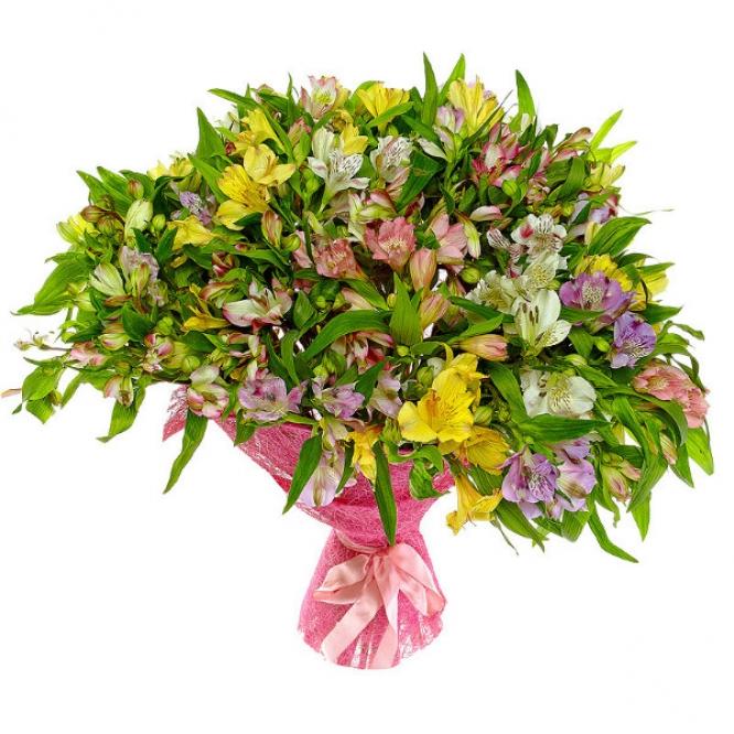 Букет цветов из фиолетовой, розовой, белой и желтой альстромерии (101 шт.) №5 с доставкой.