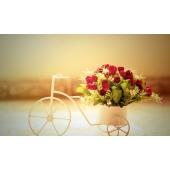 Чем полезна доставка цветов?