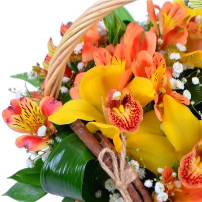 Букет-корзина из оранжевой альстромерии, желтой орхидеи, белой гипсофилы и декоративной зелени с доставкой.