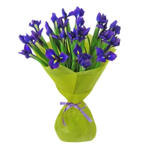 Букет цветов из синих ирисов (19 штук) с доставкой.