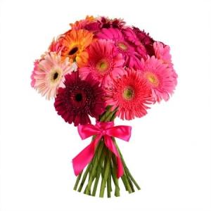Букет цветов из разноцветной герберы (21 штука) с доставкой.