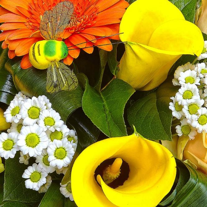 Букет цветов из белой хризантемы, рыжей герберы, желтой каллы, кремовых роз и голубой фрезии №10 с доставкой.