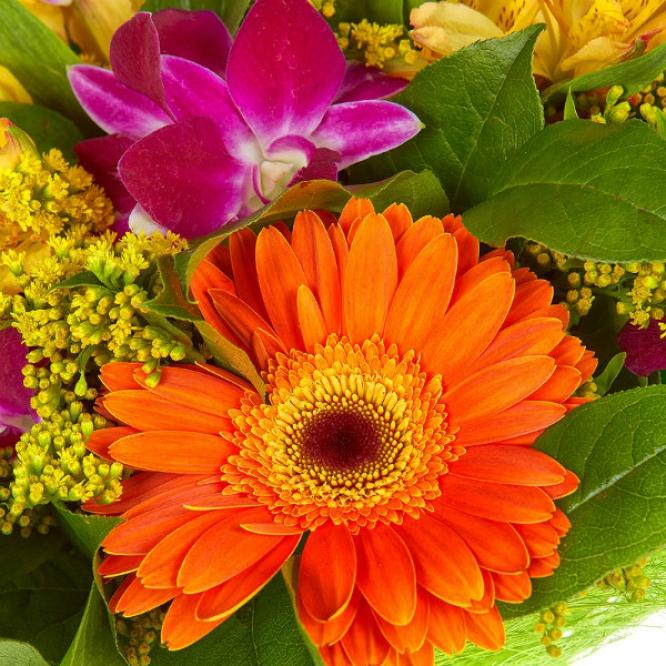 Букет цветов из желтой и красной альстромерии, рыжей герберы, розовой орхидеи Дендробиум с доставкой.