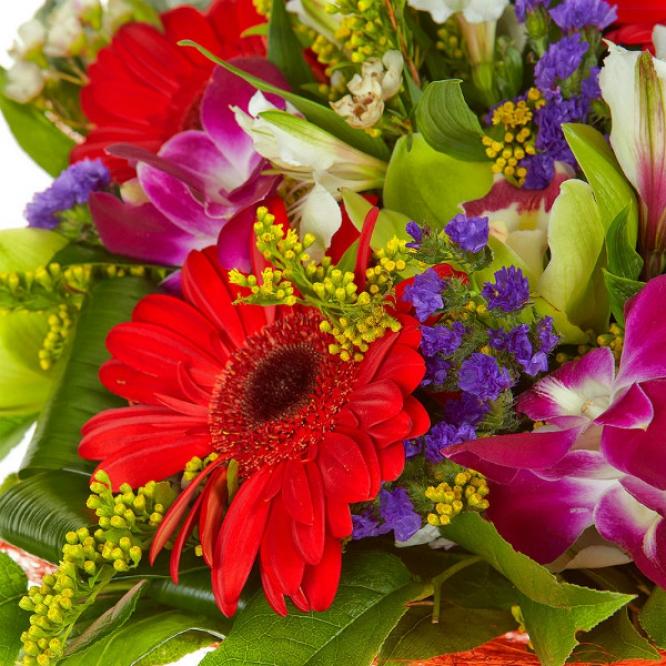 """Букет цветов из красной герберы, белой альстромерии, зеленой и розовой орхидеи """"Дендробиум"""" №21 с доставкой."""