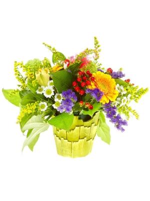 Букет-корзина из желтой альстромерии, белой хризантемы, желтой герберы и красного гиперикума №48