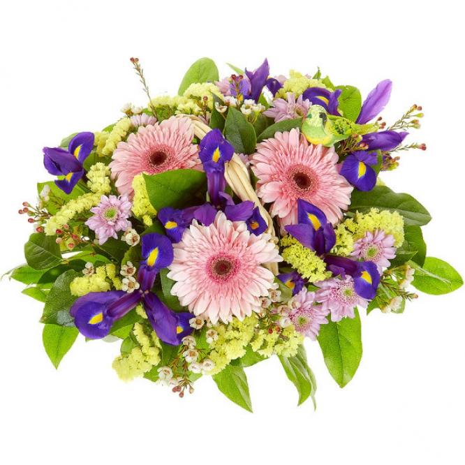 Букет-корзина из розовой герберы, синего ириса, розовой хризантемы, салала и статицы №49