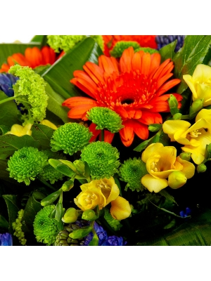 Букет цветов из зеленой хризантемы, рыжей герберы, желтой фрезии и синего гиацинта №26 с доставкой.