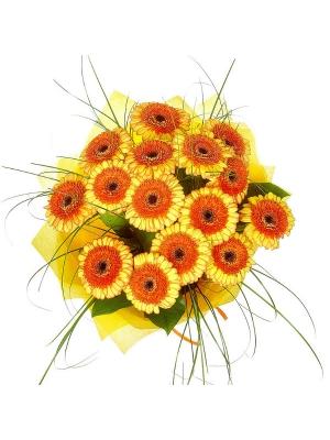 Букет цветов из оранжево-желтой герберы (15 шт.), салала и берграсса №4 с доставкой.