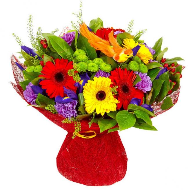 Букет цветов из желтой и красной герберы, зеленой кустовой хризантемы, гвоздики и синих ирисов №44 с доставкой.