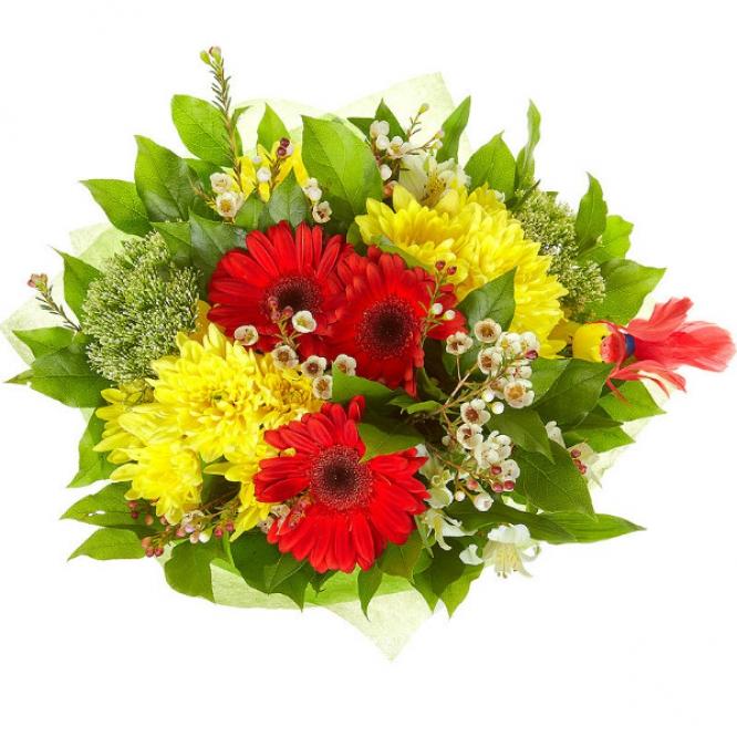 Букет цветов из красной герберы, белой альстромерии, желтой хризантемы и белого трахелиума №47 с доставкой.