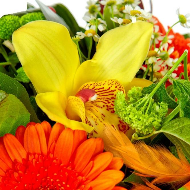 Букет цветов из зеленой хризантемы, рыжей герберы, ромашек, желтой орхидеи и леукодендрона №49 с доставкой.