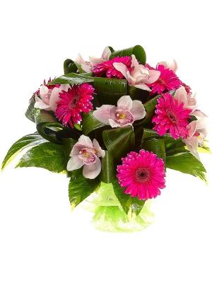 Букет цветов из малиновой герберы, розовой орхидеи, пестрой аралии и аспидистр №50 с доставкой.