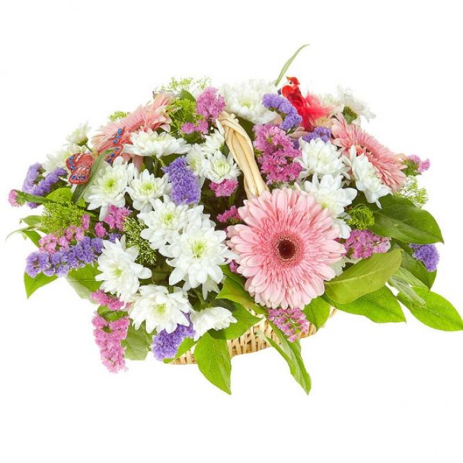 Букет-корзина из розовой герберы, белого трахелиума, статицы и белой кустовой хризантемы №53
