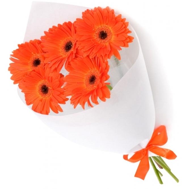 Букет цветов из красной герберы (5 шт.) с доставкой. (Вы можете заказать букет с другим количеством и цветом герберы)