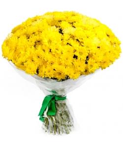 """Букет цветов из желтой хризантемы """"Сантини"""" (51 ветка) №11 с доставкой."""
