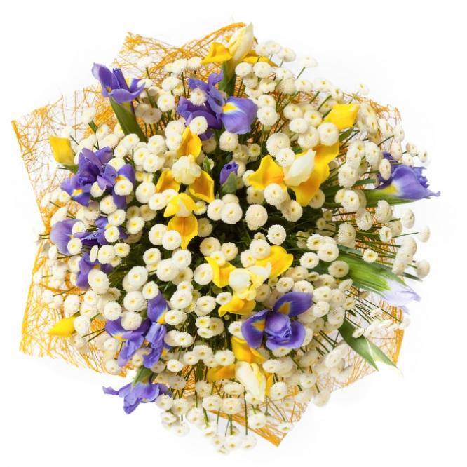 Букет цветов из синих и желтых ирисов, и танацетума №19 с доставкой.