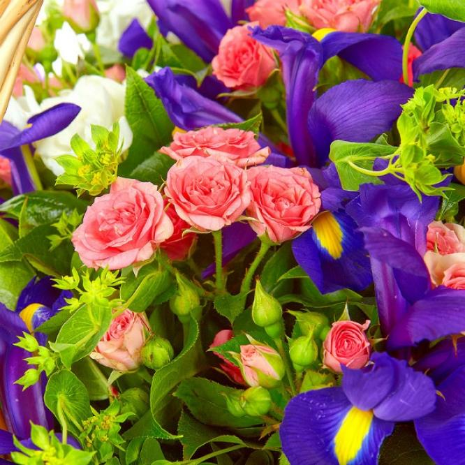 Букет-композиция из синих ирисов, розовых кустовых роз, буплерум, салала и белой фрезии №72