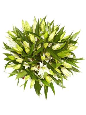 Букет цветов из белой лилии (21 шт.) №2 с доставкой.