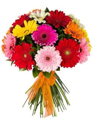 Букет цветов из микса разноцветной герберы и декоративной зелени с доставкой по Киеву №17