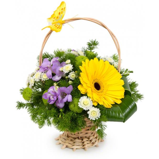 Корзинка цветов из желтой герберы, синей фрезии, белой кустовой хризантемы и декоративной зелени с доставкой.
