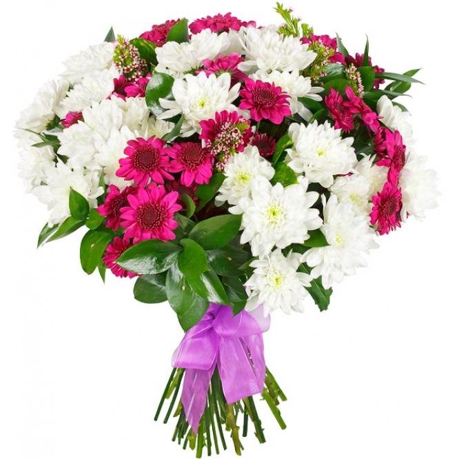 Букет цветов из фиолетовой и розовой кустовой хризантемы (экстра класс, 11 штук, 70 сантиметров) и  зелени с доставкой.