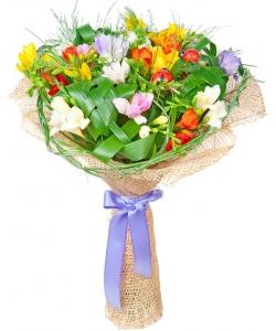 Букет цветов из разноцветной фрезии (17 веток) и декоративной зелени с доставкой по Киеву.