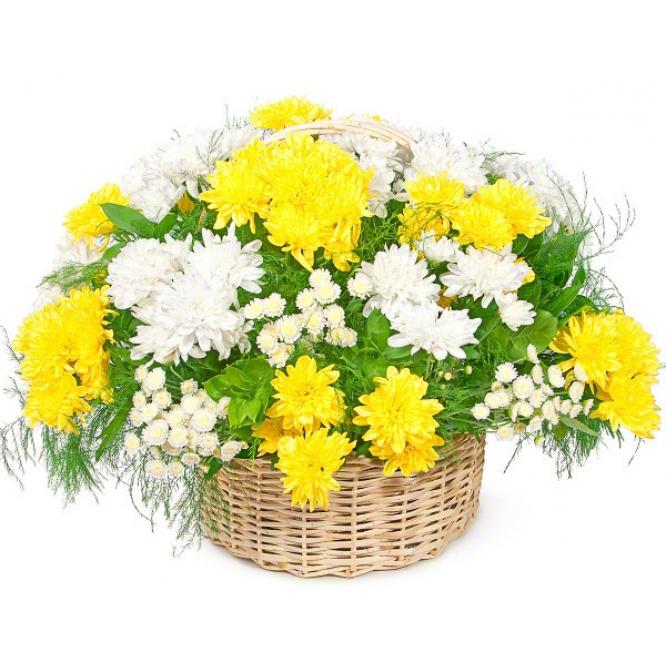 Корзина цветов из белой и желтой кустовой хризантемы (19 веток) и декоративной зелени с доставкой по Киеву.