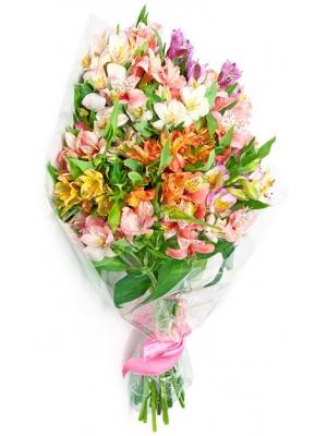 Букет цветов из разноцветной альстромерии (экстра класс, 25 штук, 70 сантиметров) с доставкой по Киеву.