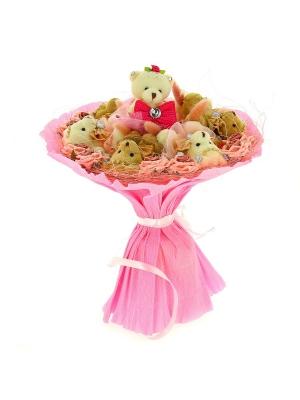 Розовый букет из мягких игрушек (мишки, 6 штук h 9 см. и 1 штука h 13 см.)