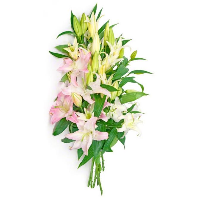 Букет цветов из белой и розовой лилии (экстра класс, 5 веток, 75 сантиметров) с доставкой по Киеву.