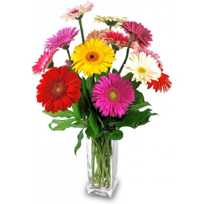 Букет цветов из разноцветной герберы (экстра класс, 15 штук, 65 сантиметров) с доставкой по Киеву.