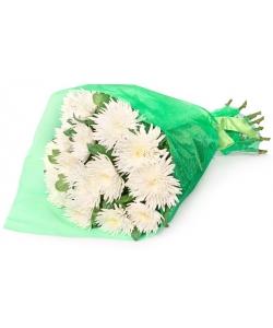 Букет цветов из однобутоновой хризантемы (экстра класс, 15 штук, 75 сантиметров) и декоративной зелени с доставкой.