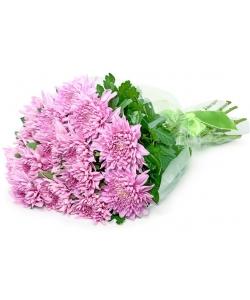 Букет цветов из фиолетовой однобутоновой хризантемы (экстра класс, 15 штук, 75 сантиметров) и декоративной зелени с доставкой.
