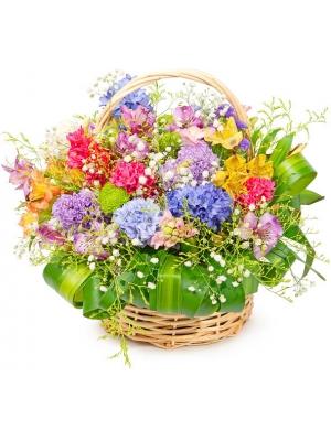 Корзина цветов из разноцветного гиацинта, альстромерии, хризантемы и декоративной зелени с доставкой по Киеву.