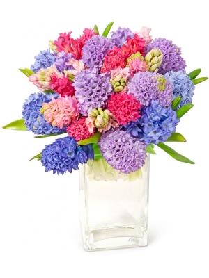 Букет цветов из микса разноцветного гиацинта (экстра класс, 25 штук, 40 сантиметров) с доставкой по Киеву.