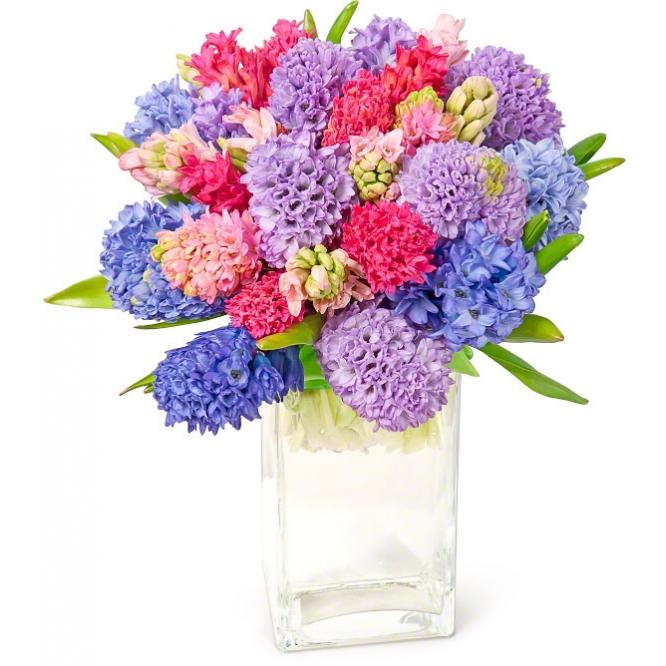 Букет цветов из микса разноцветного гиацинта (экстра класс, 25 штук, 45 сантиметров) с доставкой по Киеву.