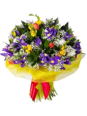 Букет цветов из синих ирисов, белых и красных тюльпанов, синей и желтой фрезии, гипсофилы и декоративной зелени с доставкой.