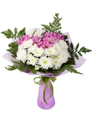 Букет цветов из фиолетовой и белой хризантемы (экстра класс, 7 веток, 75 сантиметров) и декоративной зелени с доставкой.