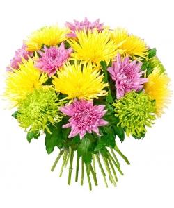 Букет цветов из желтой, фиолетовой и зеленой хризантемы (экстра класс, 17 штук, 75 сантиметров) с доставкой по Киеву.