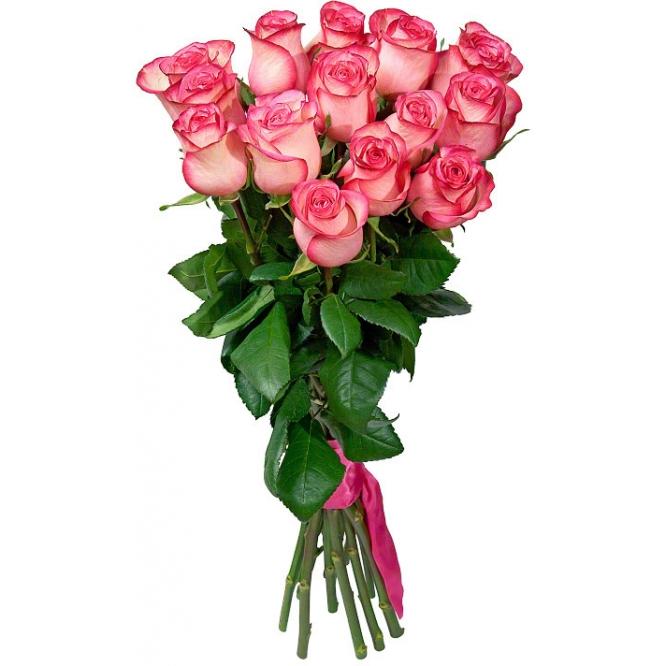 Букет цветов из светло-розовых роз (экстра класс, 15 штук, 75 сантиметров ) с доставкой по Киеву.