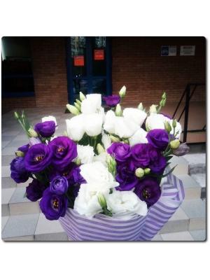 Восхитительные белые и фиолетовые эустомы (экстра класс, 11 веток) с доставкой по Киеву.