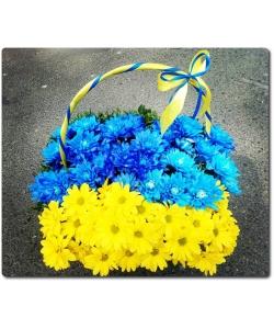 Оригинальная корзина из желтой и голубой (жовто-блакитні) хризантемы в виде флага Украины с доставкой по Киеву.