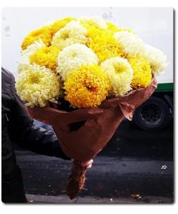 Осенний букет из ароматной желтой и светлокремовой шаровидной хризантемы (21 штука) с доставкой по Киеву.