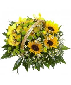 Букет-корзина из темно-желтого подсолнуха, зеленой хризантемы, ромашек и желтой орхидеи №64