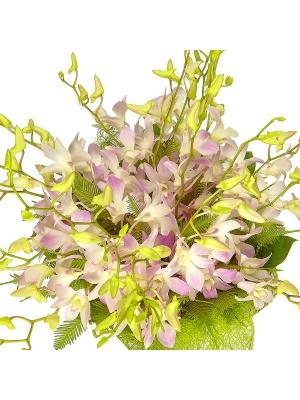 """Букет цветов из розовой орхидеи """"Дендробиум"""", салала и амбреллы №12 с доставкой."""