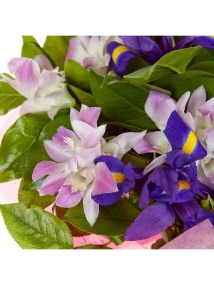 """Букет цветов из розовой орхидеи """"Дендробиум"""", салала и синего ириса №15 с доставкой."""