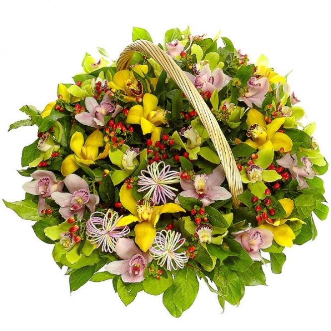 Букет-корзина из желтой, зеленой и розовой орхидеи, красного гиперикума, салала и рускуса №67