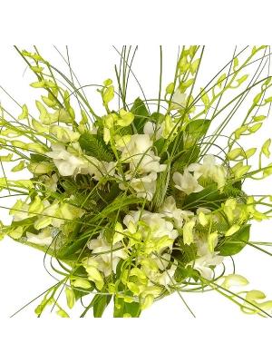 Букет цветов из белой орхидеи и зелени №12 с доставкой.